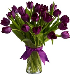 PURE PURPLE TULIPS